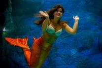 In Brazil, Mythical Creature of Sea Mermaid is Quite Real; See Pics