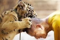 Incredible Friendship Between Humans & Animals