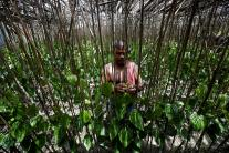 Villagers Fear For Survival on This Disappearing Island in India