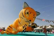 PHOTOS: International Kite Festival 2019 in Ahmedabad