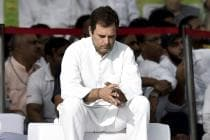 'Have Made Up My Mind': Adamant Rahul Refuses to Continue as Congress Chief Despite Pleas by Party
