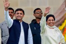 'Can't Wait Longer': Akhilesh Yadav Snubs Congress, May Join Hands With Mayawati for MP Polls