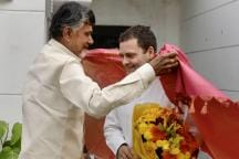 Rahul Gandhi Must Win MP, Telangana Battles Before Riding to 2019 War With 'Saarthi' Naidu