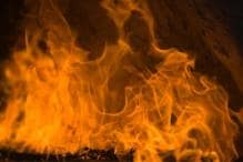 Andhra Pradesh: Pharma company unit gutted in fire
