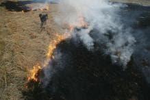Toxic Air : Young Farmers Vs Old Guard on Crop Burning in Punjab, Haryana