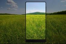Smartphone Designs Experiencing New Trend With Standout Screens