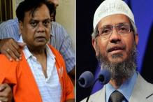 Zakir Naik Had Dealings With Builder Linked to Chhota Rajan, Says NIA