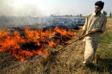 Pakistan is Better than India When it Comes to Controlling Crop Burning