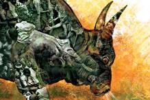 'Jallikattu is the Only Reason For Tamil Nadu Farmers To Raise Bulls'