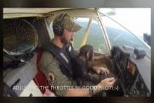 Here's a Flight With an Unusual Co-pilot