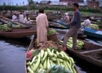 Cheap veggies are a boat ride away