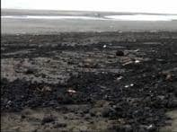 Oil sludge off Gujarat coast worries environmentalists