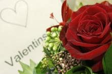 India number 2 supplier of flowers on V-day: Alibaba
