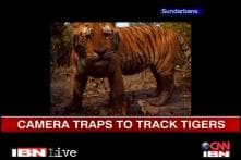 Saving the Ganga Episode 5: Conserving Sundarbans' tigers