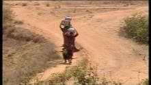 Odisha: Severe heat claims 20 lives in five days