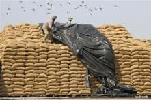 Govt gearing up to bring in ordinance on Food Security: Sources