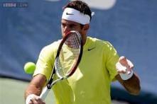 Del Potro beats Isner for third title in Washington