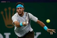 Top-seeded del Potro reaches Swiss Indoors final
