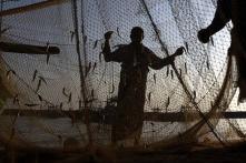 38 Indian fishermen arrested by Sri Lankan Navy