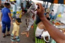 Eating white meat and fish may lower risk of liver cancer