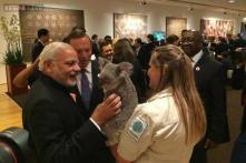 Modi charmed by Australian Koala bear at G20