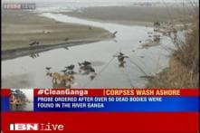 UP government orders probe after over 50 human bodies found in Ganga