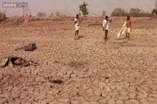 Telangana government not addressing drought conditions: BJP