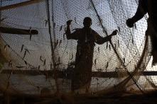 Five arrested fishermen beaten up by Sri Lankan naval personnel