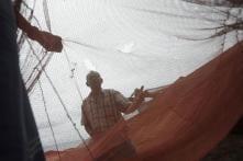Sri Lankan Navy arrests 19 Tamil Nadu fishermen