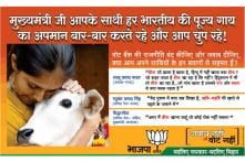 BJP 'beefs' up the campaign in Bihar against Nitish Kumar with advertisement featuring cow