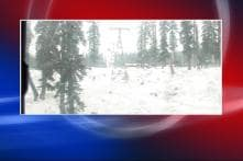 Cold wave continues across North India, Gulmarg freezes at -11 degrees Celsius