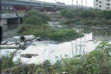 Politicians to be blamed for Bengaluru's toxic lakes