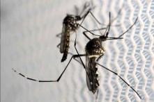 China confirms first case of Zika virus: report
