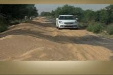 No Space to Store: Food Grain Strewn Across Roads in Haryana