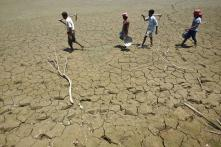 SC slams Centre on inaction in drought-hit areas, says government cannot turn a blind eye
