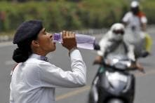 Are Drinking Water, Sanitation Facilities Provided to Traffic Cops at Duty Sites: Delhi HC Asks Police