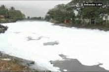 Karnataka Govt is Ignoring Lake Crisis: IISc Prof Ramachandra