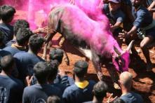 Pondy Assembly Speaker Calls for Conducting Jallikattu
