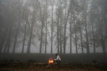 Cold Wave Grips North India, Delhi Freezes at 3.4 Degrees