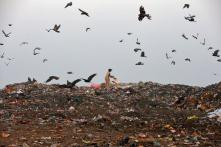 Delhi's Solid Waste Issue a Serious Problem, Says SC, Asks L-G to Set Up Committee