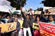'Hip-Hop Tamizha' Quits Jallikattu Stir After 'Insult to National Flag'