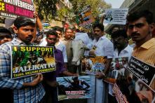 Hurt Sentiments? Hindutva Agenda? Understanding Jallikattu Protests a Year Later