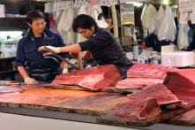 Biggest Fish Market in the World Set to Shift Locations in Tokyo
