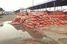 Farmers Block Highway in Malegaon Over Declining Onion Prices