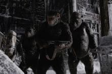 War For The Planet Of The Apes: Emotional Playoffs Make It a Compelling Watch