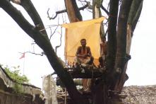 Why People in This Bihar Village are Living Atop Trees