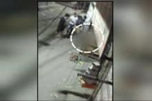 Four Men Kill Stray Dog in Cold Blood, Caught on Camera