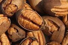 US Senators Seek Reduction on India's 'High Tariff' on Pecans