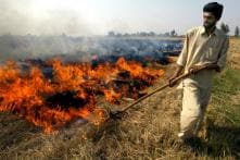 Niti Aayog Pitches for Financial Support to Farmers Not Burning Crop Residues