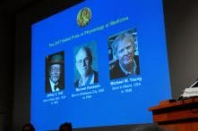 Nobel Prize in Medicine to 3 Americans For Insights Into Body's Biological Clock